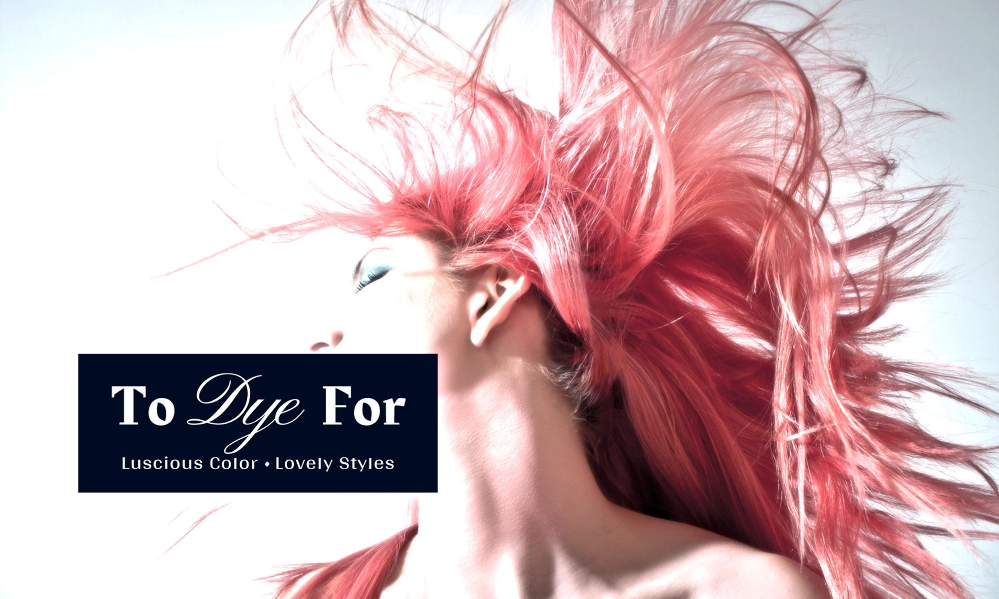 To Dye For Hair Salon - Milwaukee and Waukesha